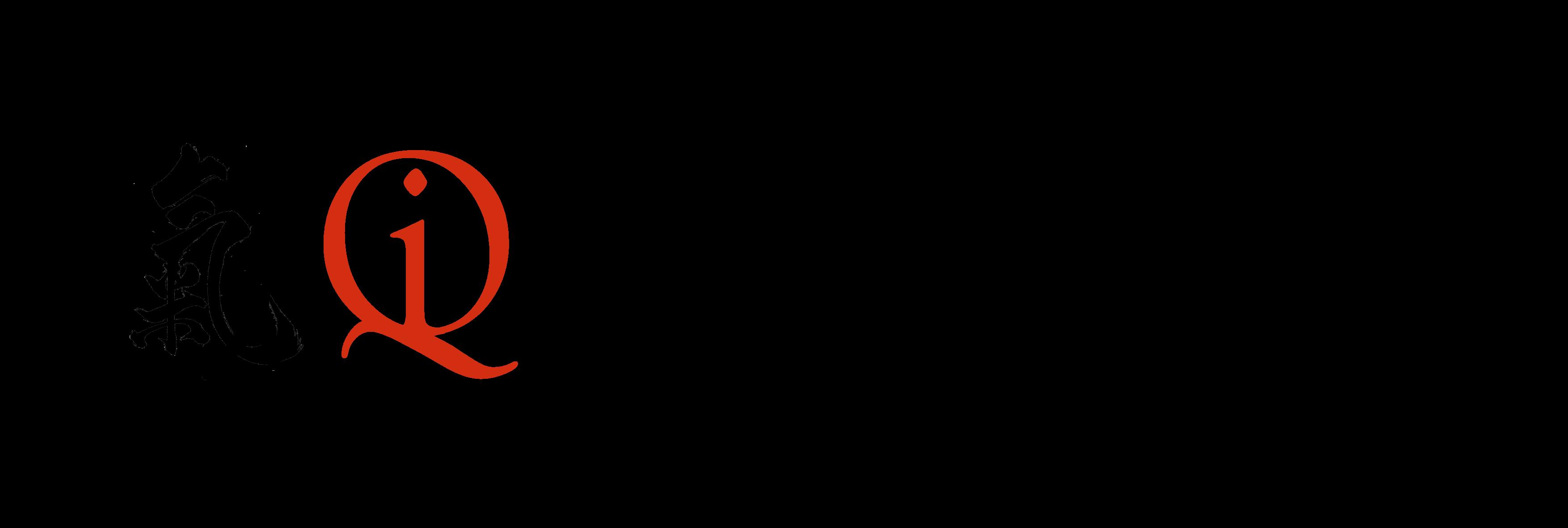 logo Qidynamic